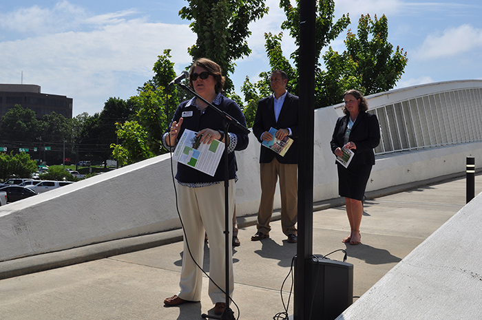 Institute helps Gainesville celebrate downtown walkability, green infrastructure