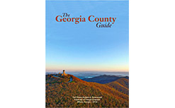 Georgia County Guide