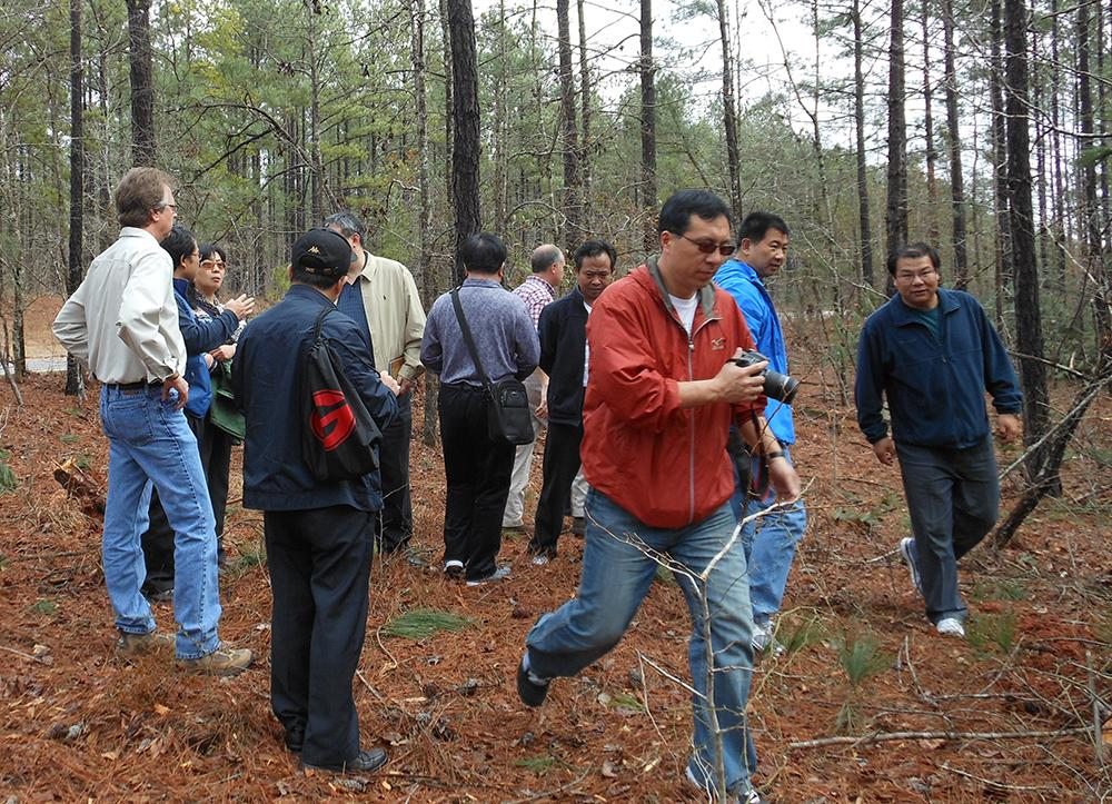 China Forestry - February 2012
